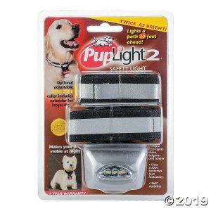 Bright Safety Flashlight Collar-Silver (1 Piece(s))