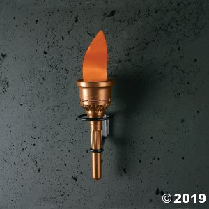 Flaming Torch Light