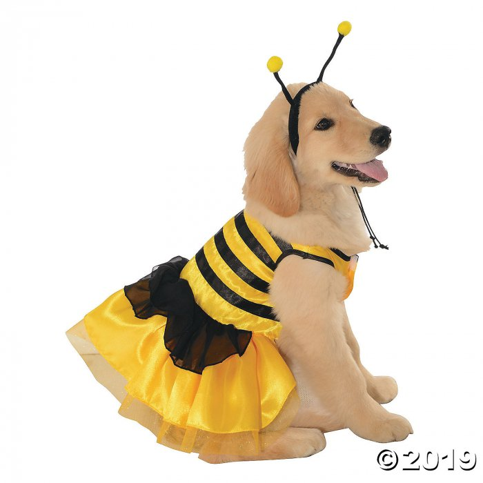 Baby Bumblebee Dog Costume - Small (1 Piece(s))