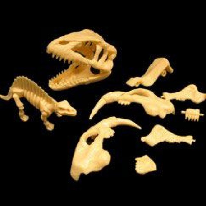 Small Dinosaur Skeleton Puzzles (Per 12 pack)