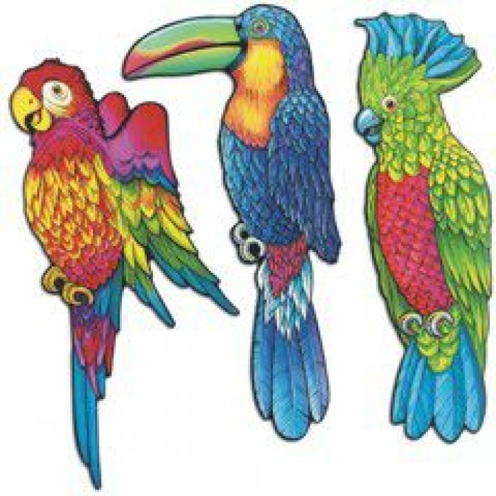 Exotic Birds Cutouts